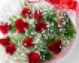 Shop hoa tươi online | Lavender Flowers