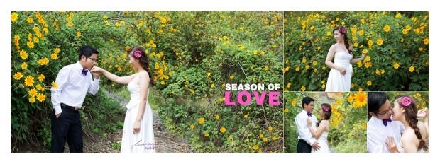 dia diem chup hinh cuoi dep o da lat 620x232 Những cánh rừng chụp hình cưới đẹp tại Đà Lạt