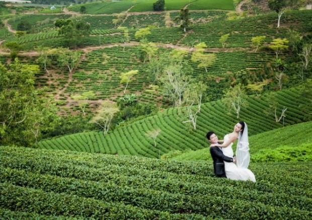 anh cuoi ngot ngao tren doi 620x437 Điểm chụp ảnh cưới tại Đà Lạt mới toanh Ngọn đồi Thiên Phúc Đức