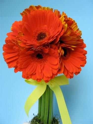 hoa tuoi tang sinh nhat dong nghiep Dịch vụ đặt hoa tươi online Lavender Flowers