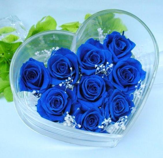 co nen tang hoa cho ban gai 5 Có nên tặng bạn gái mới quen hoa hồng xanh?