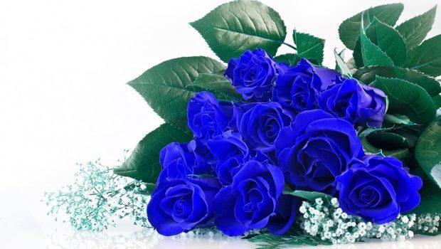 co nen tang hoa cho ban gai moi quen 1 620x350 Có nên tặng bạn gái mới quen hoa hồng xanh?