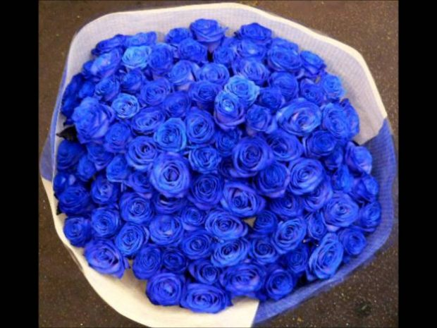 co nen tang hoa cho ban gai moi quen 3 620x465 Có nên tặng bạn gái mới quen hoa hồng xanh?