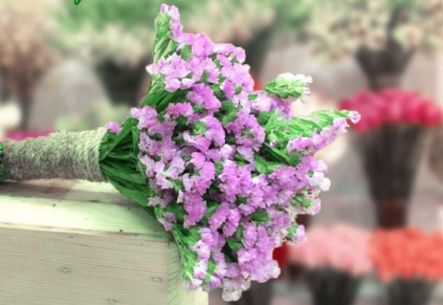 co nen tang hoa salem cho ban gai  620x427 Có nên tặng bạn gái hoa Salem