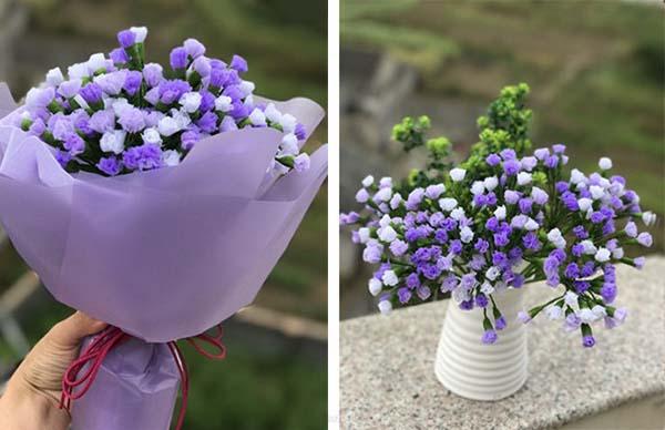co nen tang hoa salem cho ban gai 5 Có nên tặng bạn gái hoa Salem