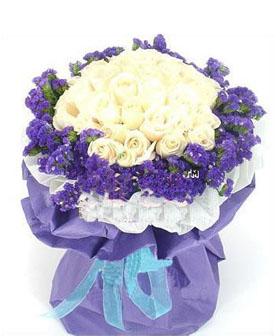co nen tang hoa salem cho ban gai 7 Có nên tặng bạn gái hoa Salem