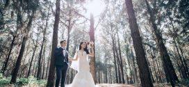Tiêu chí quan trọng để chọn studio chụp hình cưới tại TpHCM